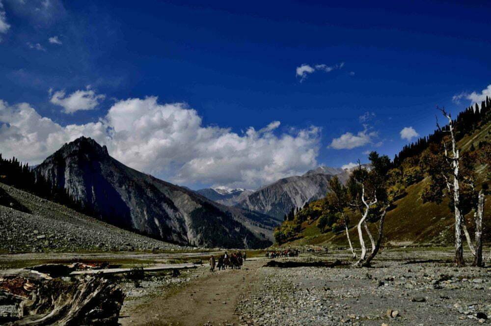 Sonmarg in Kashmir D7333